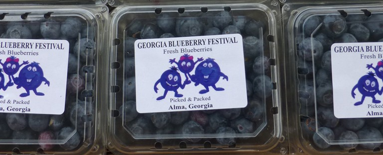 Buy Blueberries Here